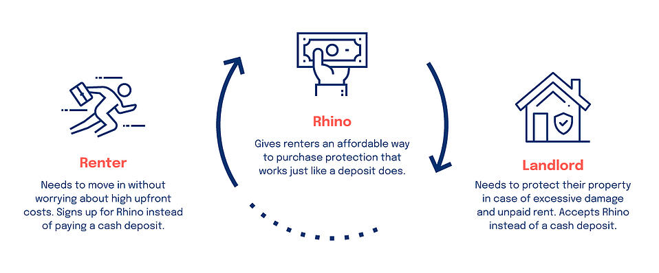 Feedback Loop Case Study: Rhino identifies a new market